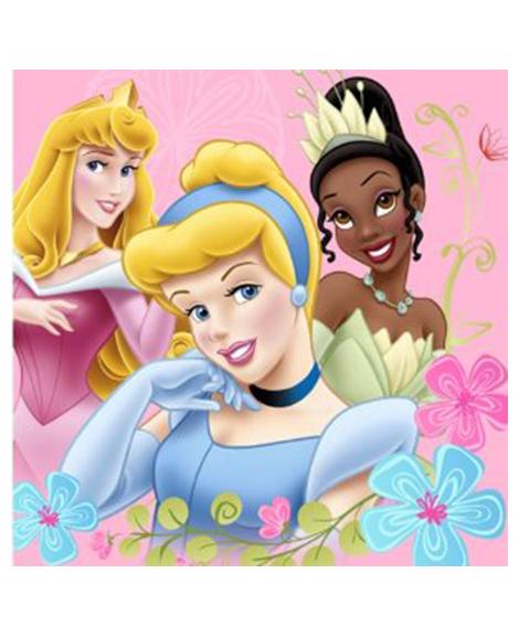 Disney Princess Dreams Beverage Napkins