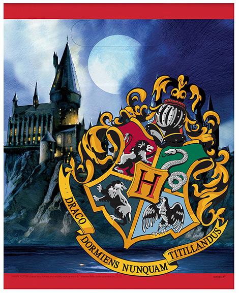 Harry Potter Party Favor Treat Bags